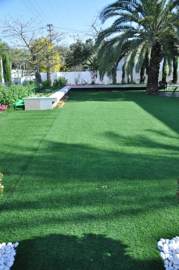 דשא ירוק שחופיפה