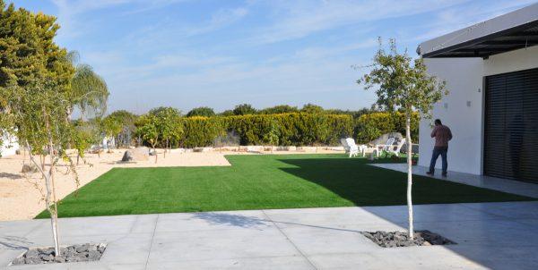 דשא סנטטי ירוק שחפופיה